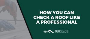 How You Can Check a Roof Like a Professional